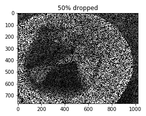 Image with 50% missing data (b)