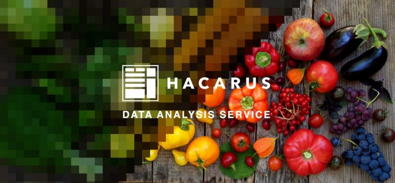 Hacarus Launches Sparse Modeling Based Data Analysis Service